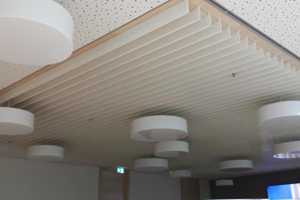 Abb.4: Kühldecke in einem Schulungsraum der Landesversicherungsanstalt Münster mit vertikal aufgehängten Strangpressprofilen aus Aluminium, die mit Phasenwechselmaterialien (PCM) gefüllt sind. Die vertikale Ausrichtung der PCM-haltigen Profile erhöht die Kühlwirkung der Kühldecke, die regulär passiv und in Wärmeperioden aktiv betrieben werden kann.
